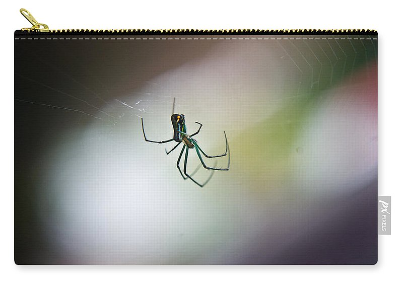 Long Carry-all Pouch featuring the photograph Long Legged Green Spider 2 by Douglas Barnett