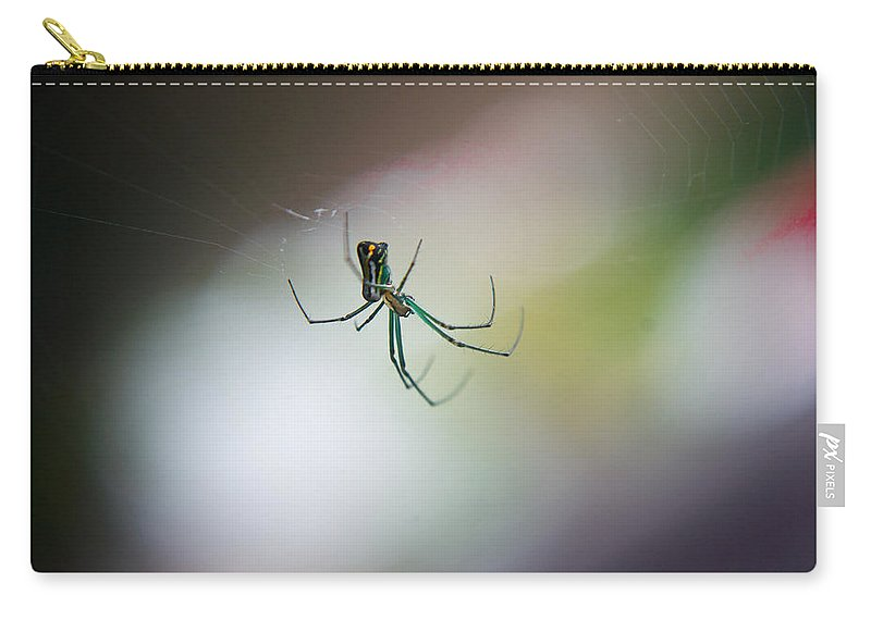Long Carry-all Pouch featuring the photograph Long Legged Green Spider by Douglas Barnett