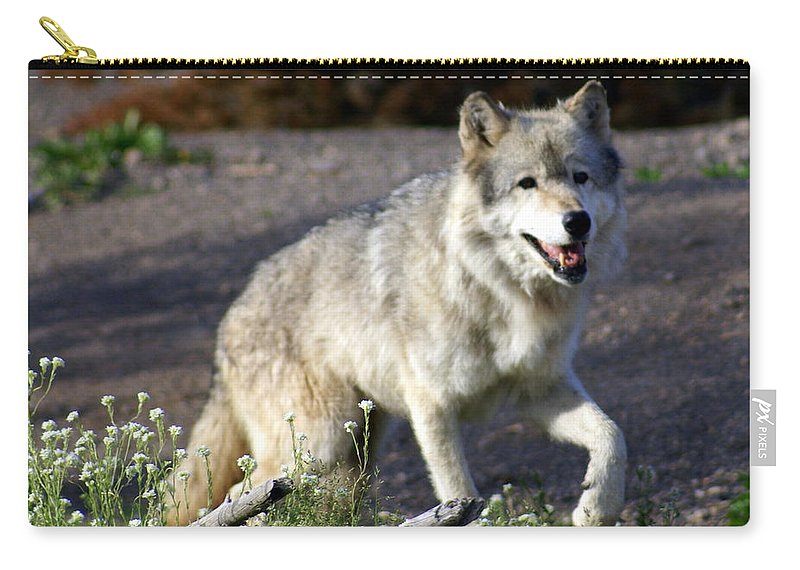 Wildlife Carry-all Pouch featuring the photograph Lonly Wolf by Marty Koch