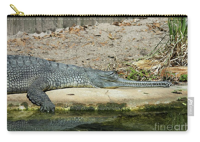 Alligator Carry-all Pouch featuring the photograph Look At All Those Teeth by Deborah Benoit