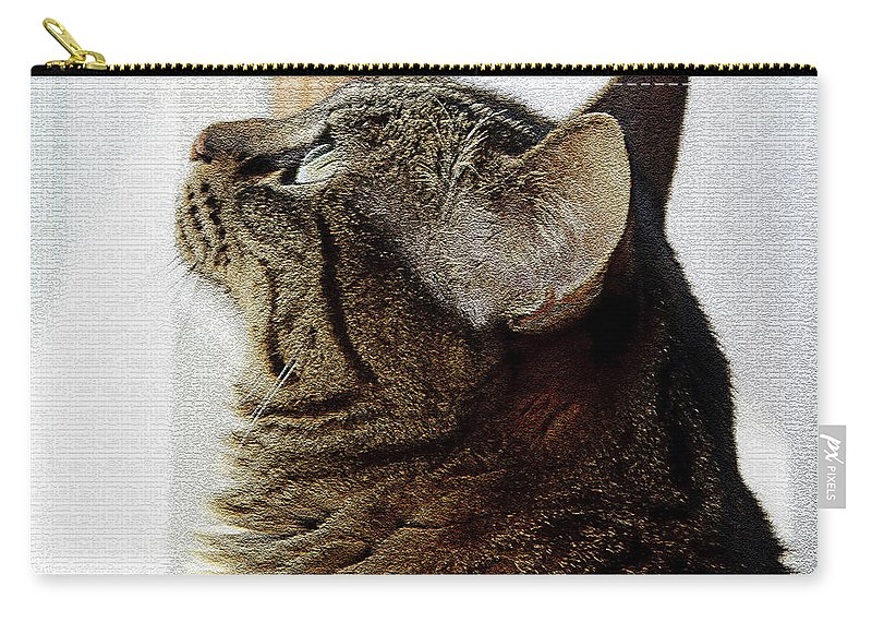 Window Carry-all Pouch featuring the photograph Look Out Window Tabby Cat by Andee Design