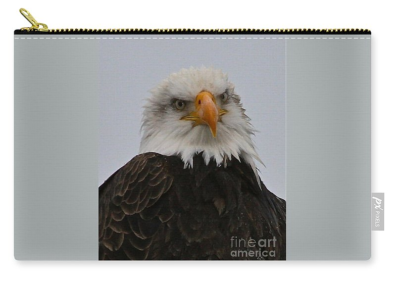 Eagle Carry-all Pouch featuring the photograph Looking At You by Rick Monyahan