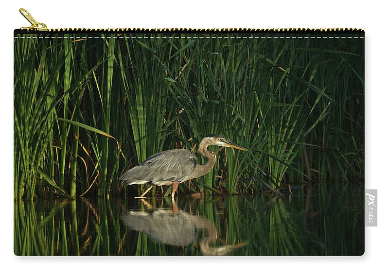 Animals Carry-all Pouch featuring the photograph Looking For Breakfast by Ernie Echols
