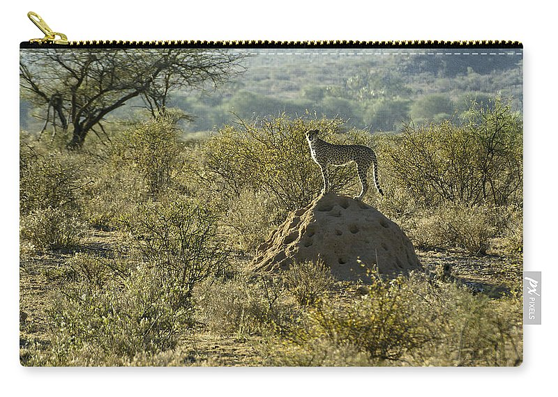 Africa Carry-all Pouch featuring the photograph Looking For Dinner by Michele Burgess