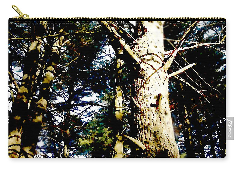 Trees Carry-all Pouch featuring the painting Looking Skyward by Paul Sachtleben