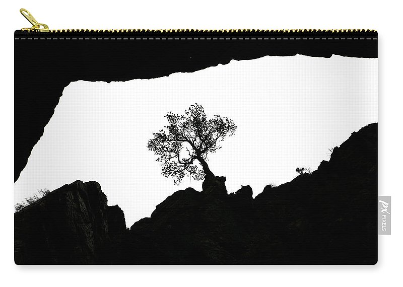 Tree Carry-all Pouch featuring the photograph Looking Up 2 by Marilyn Hunt