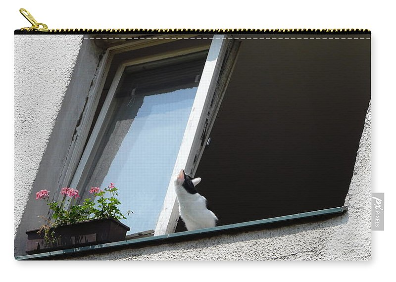 Cat Carry-all Pouch featuring the photograph Looking Up by Valerie Ornstein