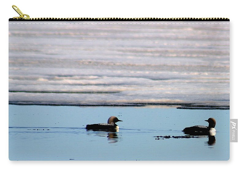Loons Carry-all Pouch featuring the photograph Loon On The Arctic by Anthony Jones
