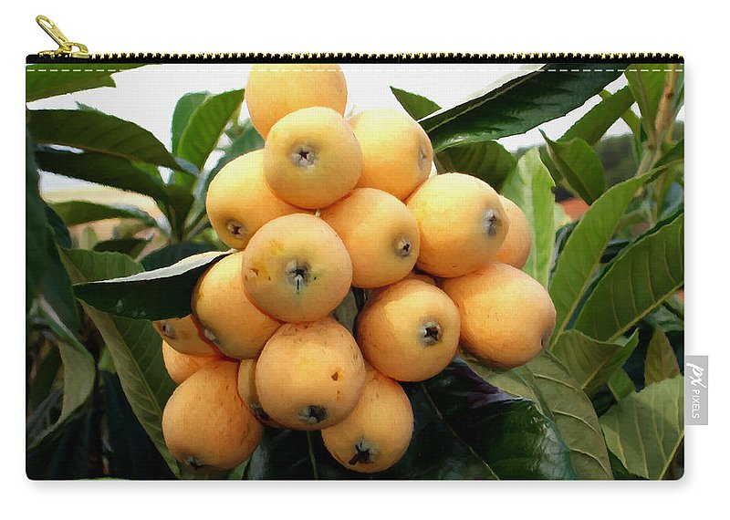 Loquat Carry-all Pouch featuring the painting Loquat Exotic Tropical Fruit 4 by Jeelan Clark