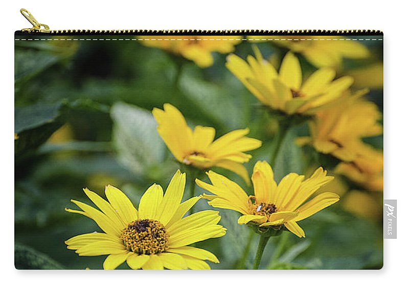 Loraine Sunshine 2 Carry-all Pouch featuring the photograph Loraine Sunshine 2 by Susan McMenamin