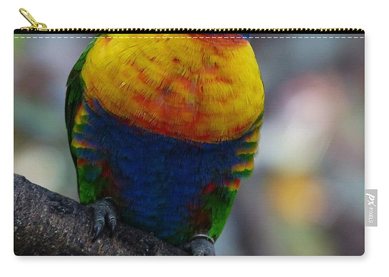 Parrot Carry-all Pouch featuring the photograph Lorikeet Parrot by FL collection