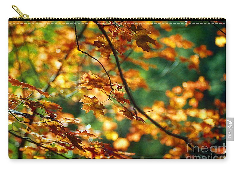 Fall Color Carry-all Pouch featuring the photograph Lost In Leaves by Kathy McClure