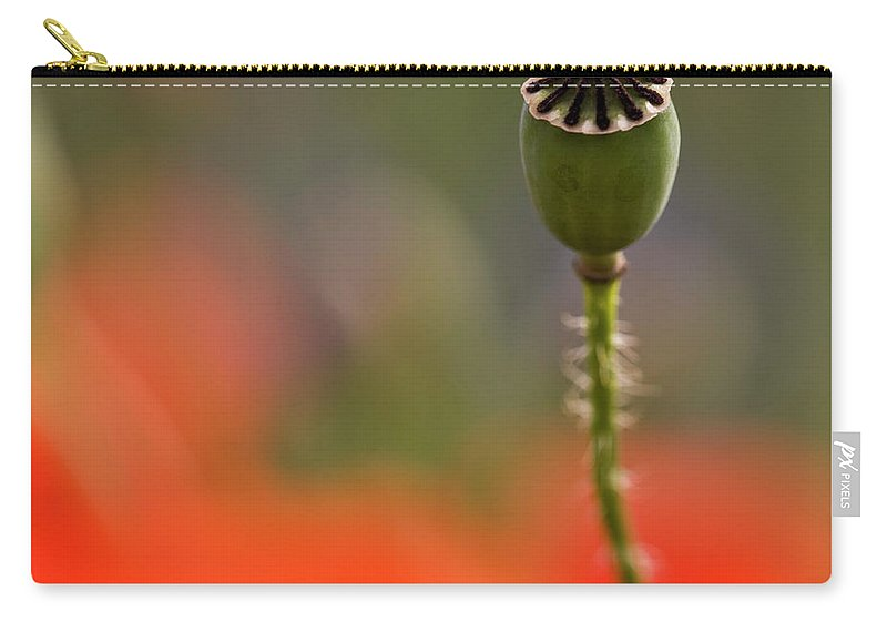 Poppy Carry-all Pouch featuring the photograph Lost In The Field by Heiko Koehrer-Wagner