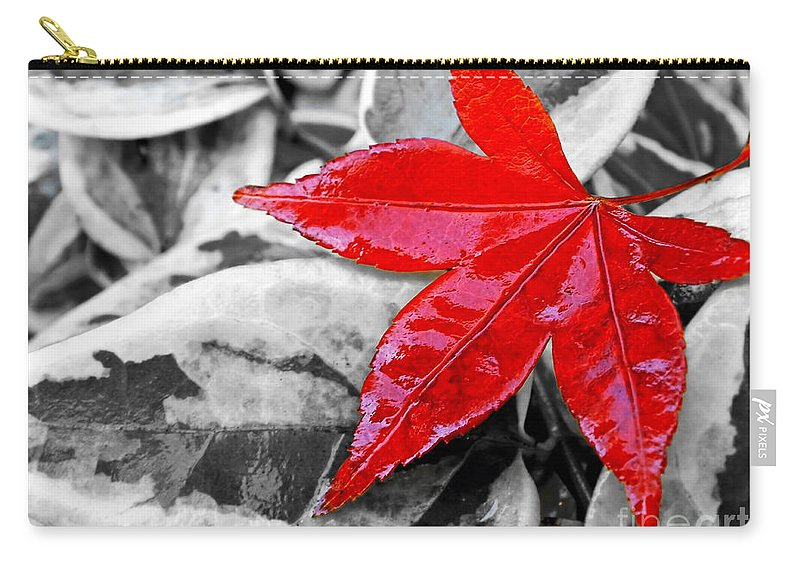 Photography Carry-all Pouch featuring the photograph Lost by Kaye Menner