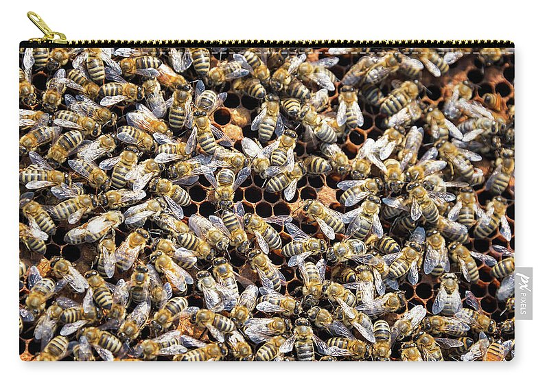 Bee Carry-all Pouch featuring the photograph Lots and Lots of Bees by Jess Kraft