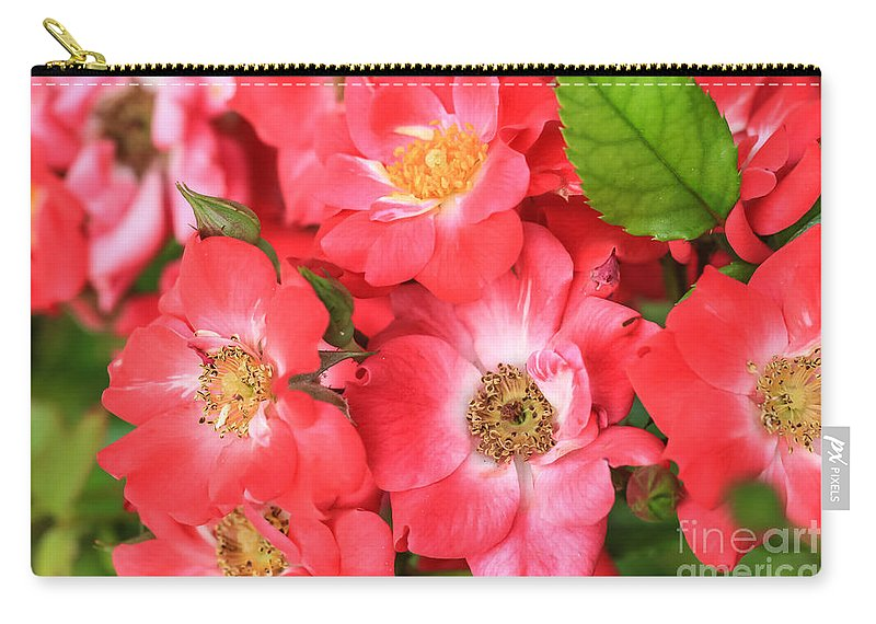 Flowers Carry-all Pouch featuring the photograph Lotta Pink by Ashley M Conger