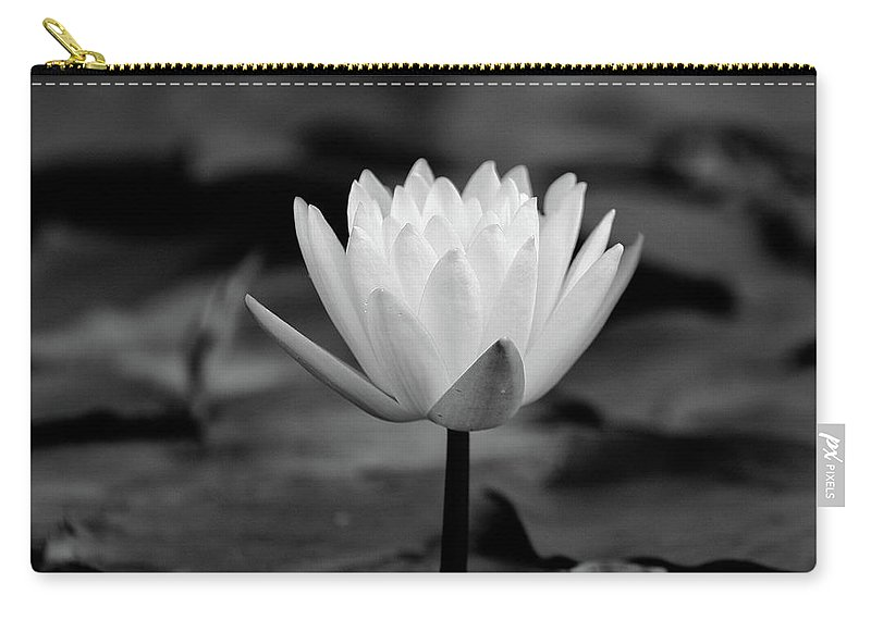 Black And White Carry-all Pouch featuring the photograph Lotus Blooms by MotionOne Studios