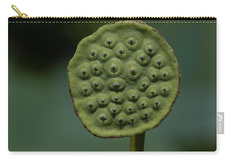 Lotus Flower Carry-all Pouch featuring the photograph Lotus Pod by Brent Bordelon