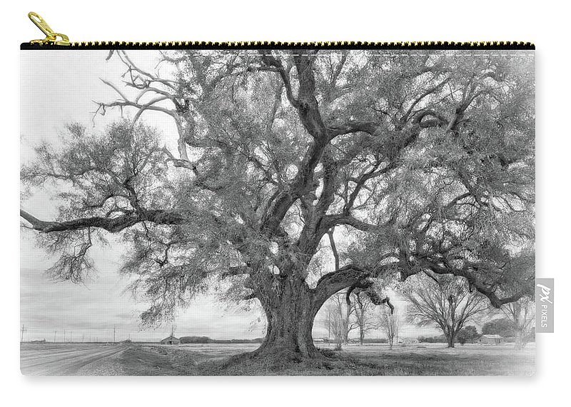 Delta Carry-all Pouch featuring the photograph Louisiana Dreamin' Monochrome by Steve Harrington