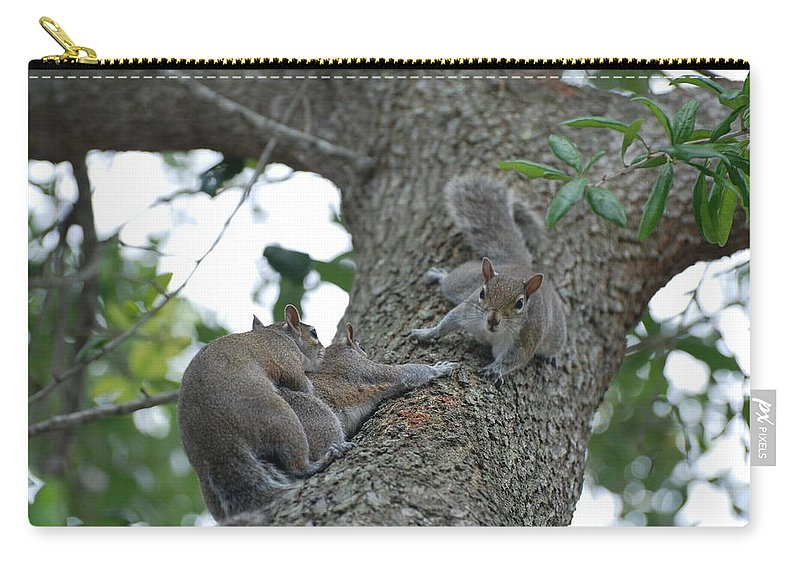 Squirrel Carry-all Pouch featuring the photograph Luck Be A Lady by Rob Hans