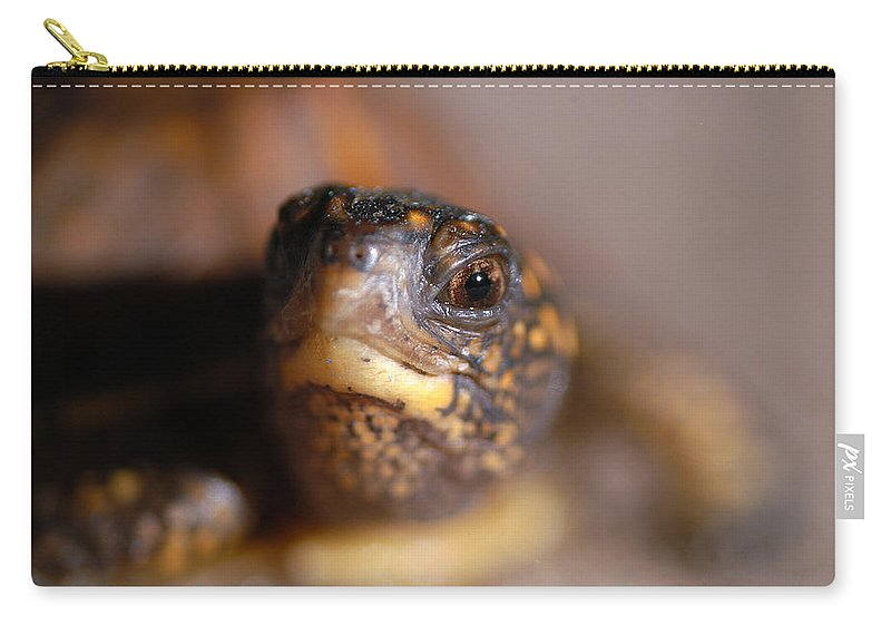 Clay Carry-all Pouch featuring the photograph Lucky by Clayton Bruster