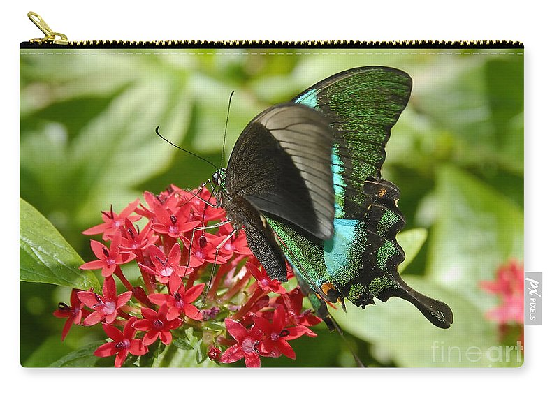 Luminescence Carry-all Pouch featuring the photograph Luminescence by David Lee Thompson