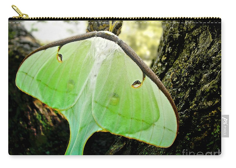 Macro Carry-all Pouch featuring the photograph Luna Moth No. 3 by Todd A Blanchard