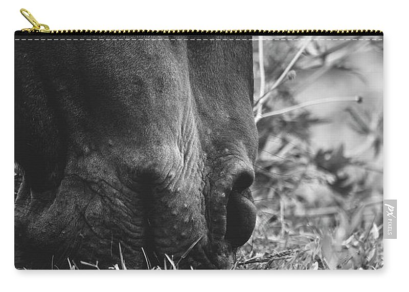 Horses Carry-all Pouch featuring the photograph Lunch by H Roberts Photography