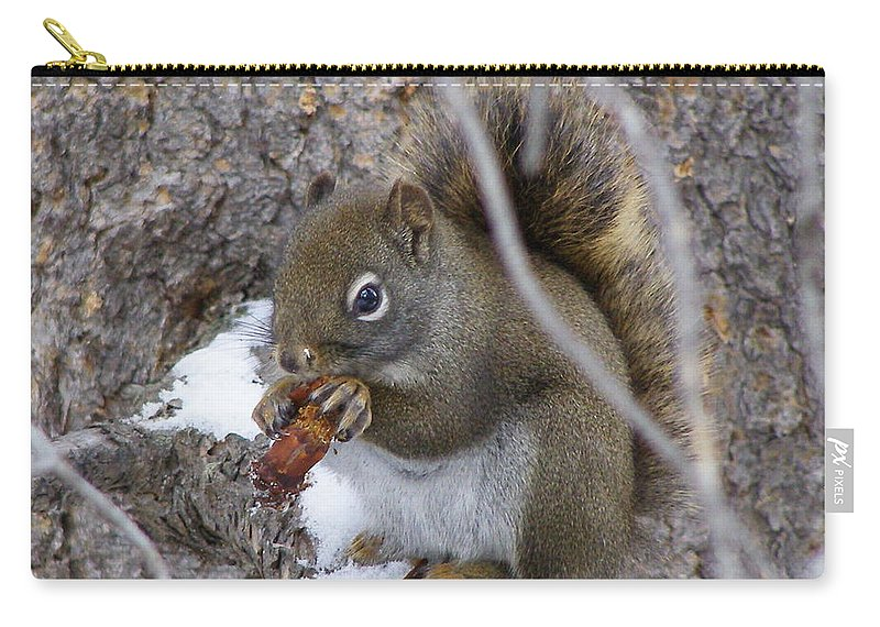 Squirrel Carry-all Pouch featuring the photograph Lunch On The Patio by DeeLon Merritt