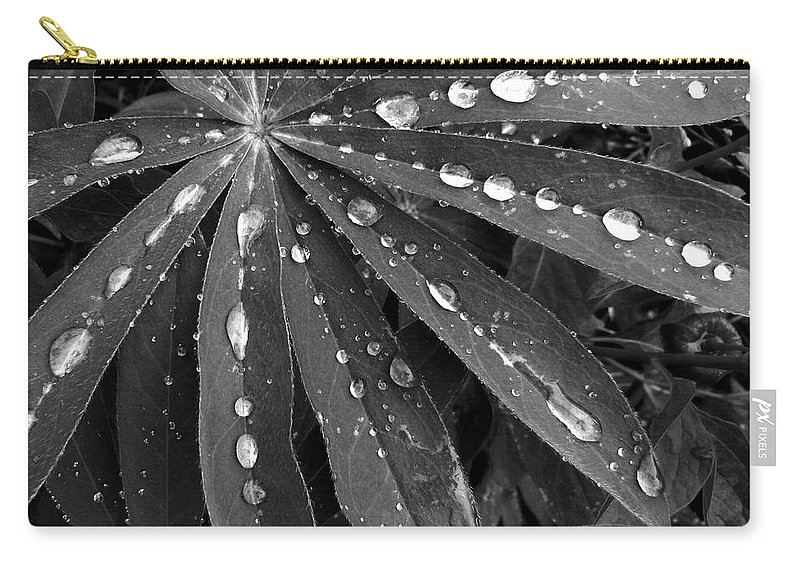 #lupinleavesraindrops Carry-all Pouch featuring the photograph Lupin Leaves With Rain Drops by Will Borden