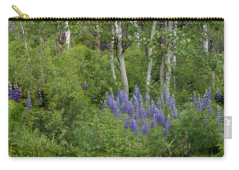 Aspen Carry-all Pouch featuring the photograph Lupine And Aspens by Heather Coen
