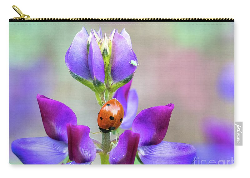 Lupine Carry-all Pouch featuring the photograph Lupine And Friends by Mimi Ditchie