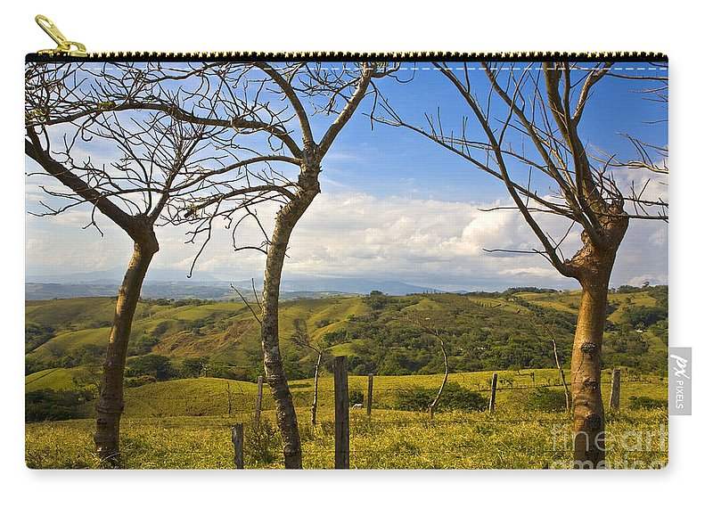 Tree Carry-all Pouch featuring the photograph Lush Land Leafless Trees I by Madeline Ellis