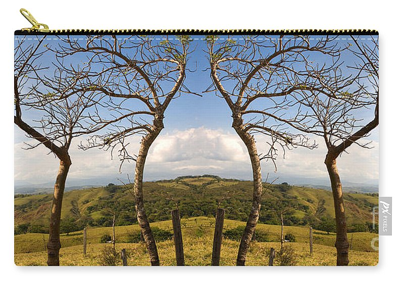 Trees Carry-all Pouch featuring the photograph Lush Land Leafless Trees IIi by Madeline Ellis
