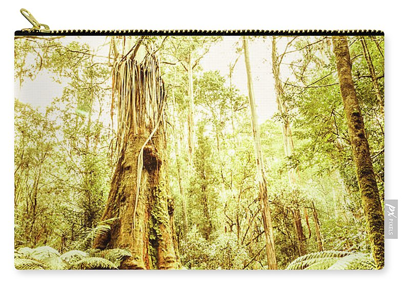 Australia Carry-all Pouch featuring the photograph Lush Tasmanian Forestry by Jorgo Photography - Wall Art Gallery