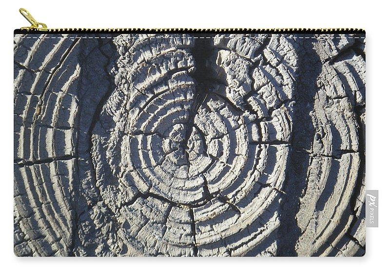 Tamara Kulish Carry-all Pouch featuring the photograph M Scored Into A Log by Tamara Kulish
