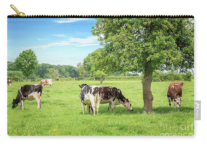 Cows Carry-all Pouch featuring the photograph Ma Normandie by Delphimages Photo Creations