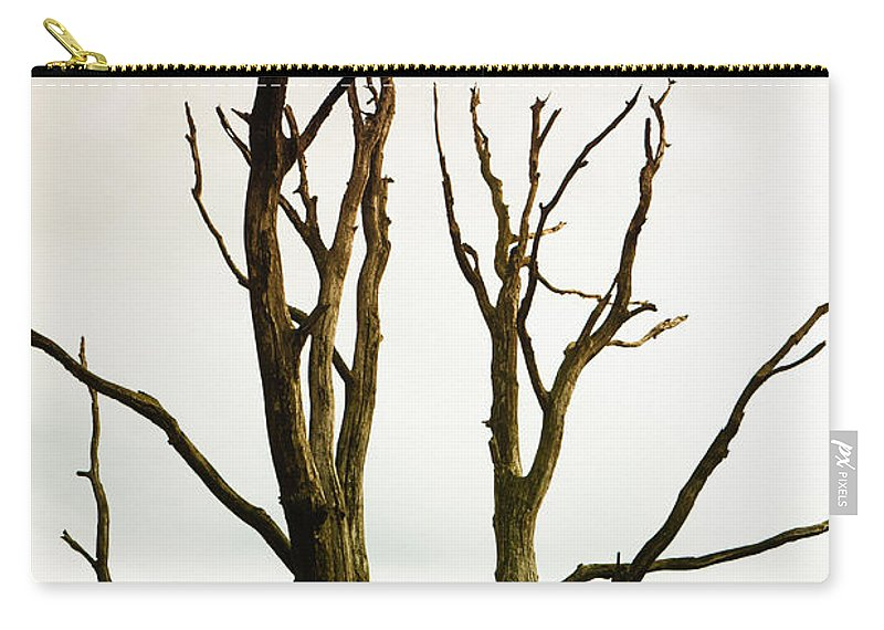 Dead Carry-all Pouch featuring the photograph Macabre Leafless Tree by Jan Brons