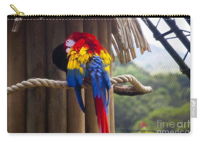 Macaw Carry-all Pouch featuring the photograph Macaw by Madeline Ellis