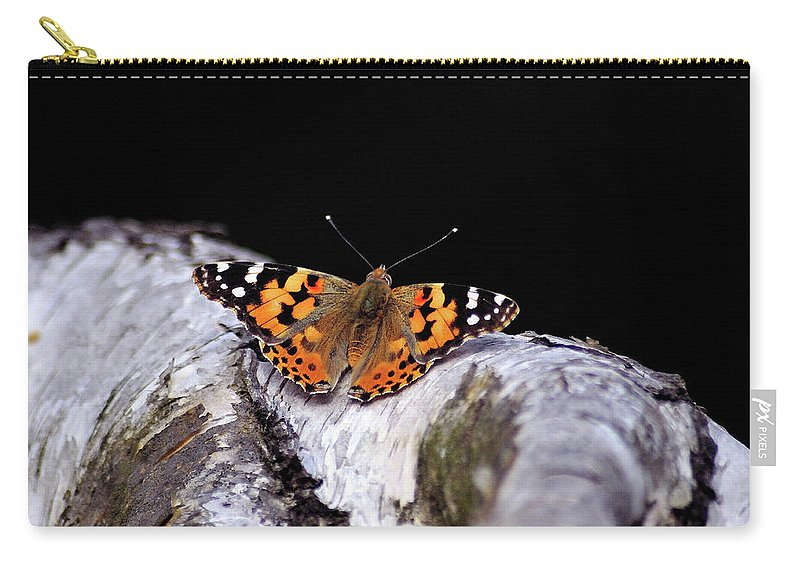Butterfly Carry-all Pouch featuring the photograph Madame Butterfly by Ilaria Andreucci