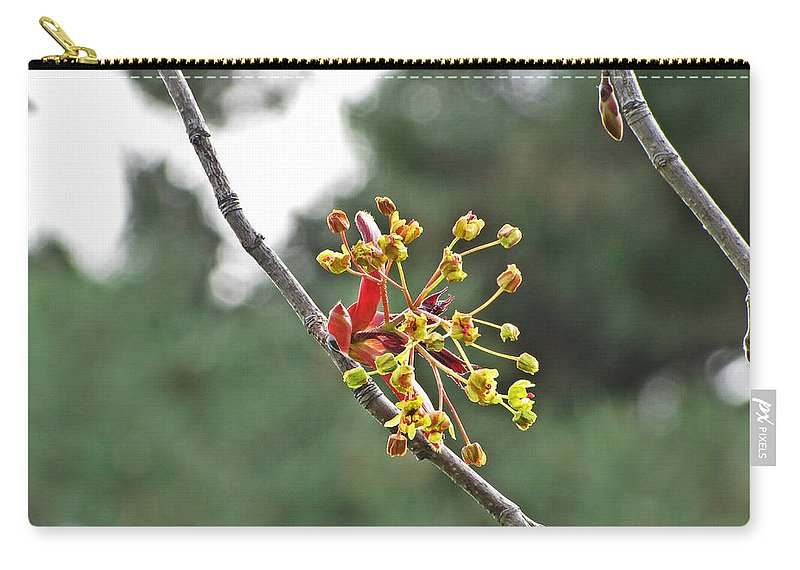Blooming Carry-all Pouch featuring the photograph Made From Magic by Jessica Tolemy