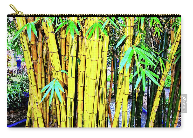 Bamboo Carry-all Pouch featuring the photograph City Park Bamboo Grass by Wilf Doyle