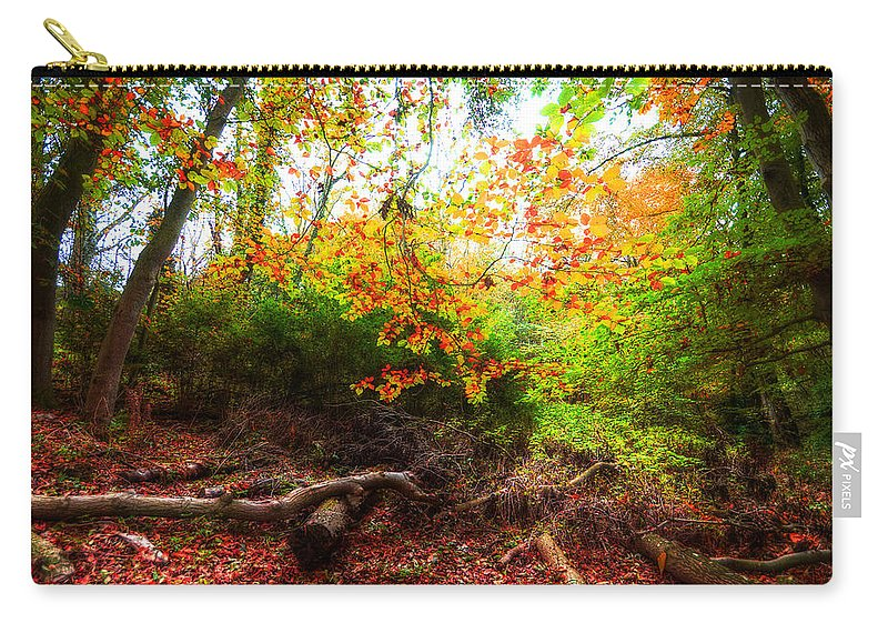 Autumn Carry-all Pouch featuring the photograph Magic Forest by Svetlana Sewell