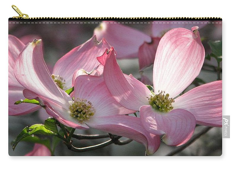 Pink Dogwood Carry-all Pouch featuring the photograph Magic Morning by Angela Davies