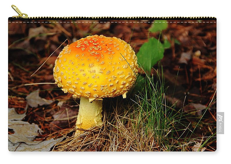 Mushrooms Carry-all Pouch featuring the photograph Magic Mushroom by Debbie Oppermann