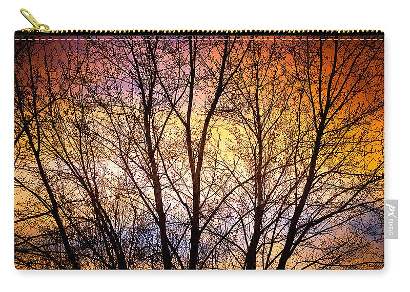 Silhouette Carry-all Pouch featuring the photograph Magical Colorful Sunset Tree Silhouette by James BO Insogna