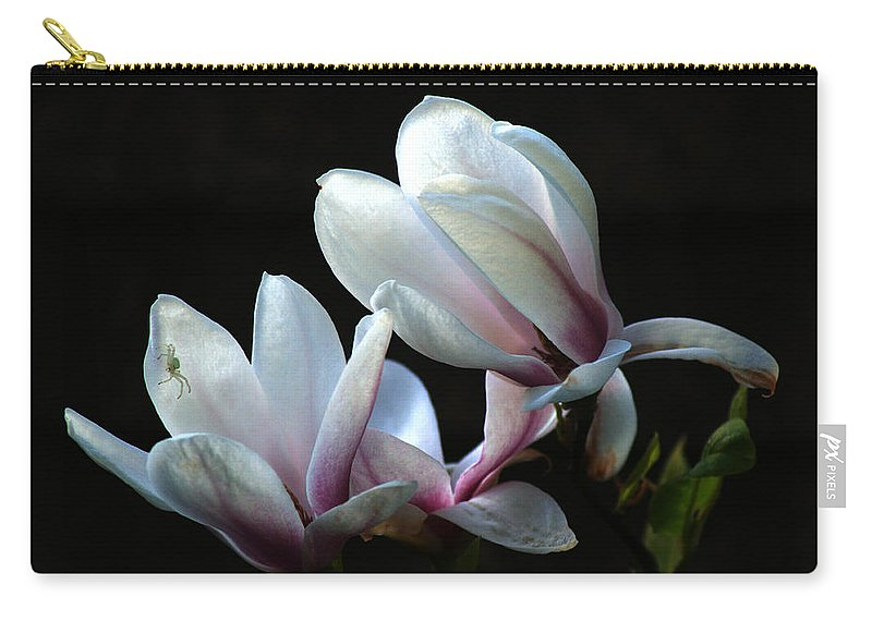 Magnolia Carry-all Pouch featuring the photograph Magnolia And House Guest by Chris Day