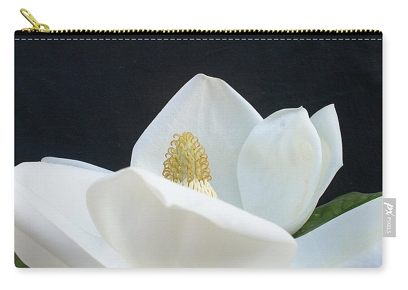 Flower Carry-all Pouch featuring the photograph Magnolia by Nancy Ingersoll