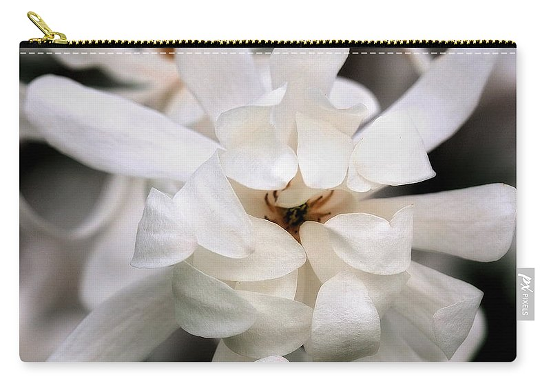 Flower Carry-all Pouch featuring the photograph Magnolia Square by Angela Rath