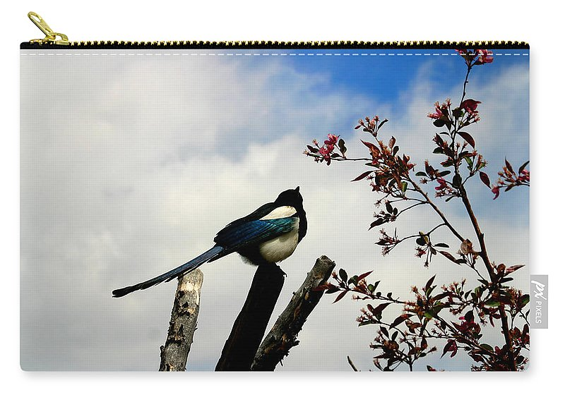 Magpie Carry-all Pouch featuring the photograph Magpie by Anthony Jones